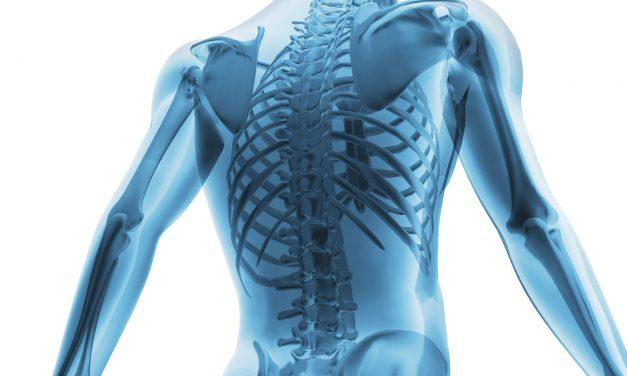 Anatomy Versus Physiology