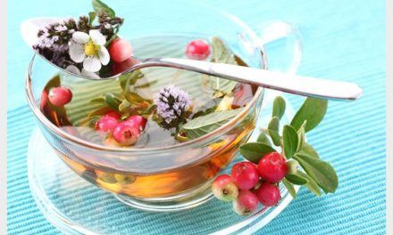 Top 7 Fat Burning Tea To Melt Belly Fat – Trimmers On A Mission