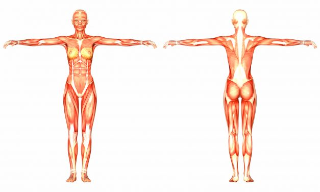Mastering Anatomy and Physiology