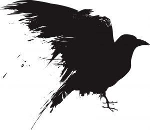 Ornithophobia the fear of birds